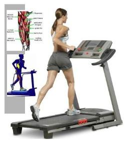 Blast Fat (And Boredom) With This Treadmill Workout pictures