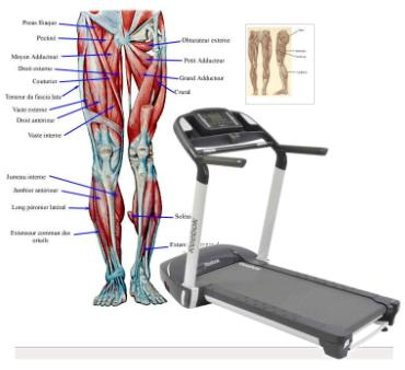 Treadmill Muscle Workouts cheap used treadmills