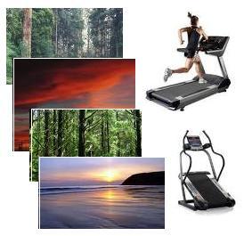 Treadmill Scenery Workouts treadmill true fun