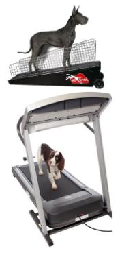 treadmill for dogs dog exercise treadmill
