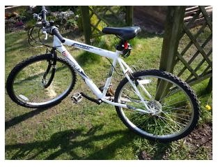 best buys on road bicycles